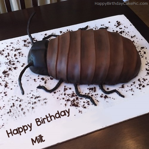 write name on Cockroach Birthday Cake